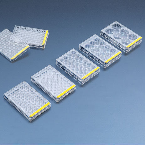 Additional Advantages Of The Tpp Tissue Culture Test Plates With 96 Wells